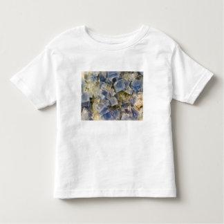 Blue Fluorite Crystals in Matrix Toddler T-shirt
