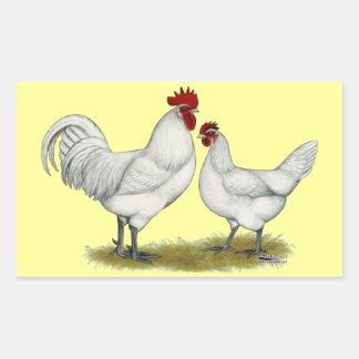 Blue Foot Chickens Sticker