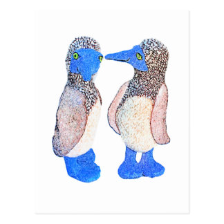 Blue Footed Birds Gifts and Apparel Postcard