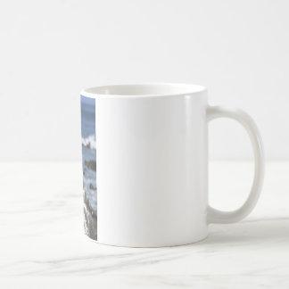 Blue footed Boobies Galapagos Islands Coffee Mug