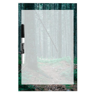 Blue Forest Treescape Nature Photograph Dry-Erase Board