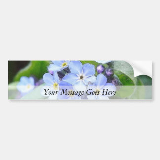 Blue Forget Me Not Flowers Bumper Sticker