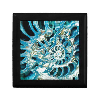 Blue Fossil Gift Box