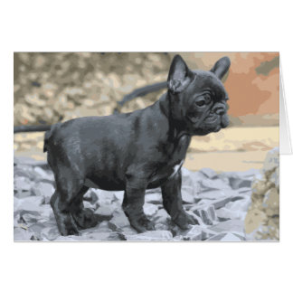 BLUE FRENCHIE CARD