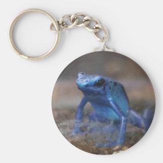 blue frog keychain