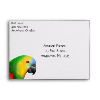 Blue Fronted Amazon Parrot Envelope