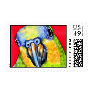 Blue Fronted Amazon Parrot Postage Stamps