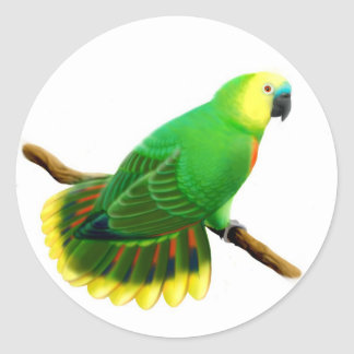 Blue Fronted Amazon Parrot Sticker