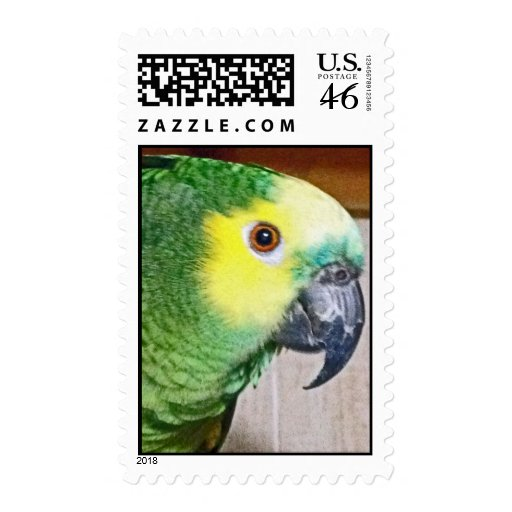 Blue-fronted Amazon Stamps