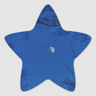 Blue Full Moon With Trees Star Sticker