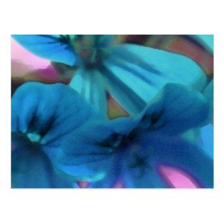 Blue Geraniums Postcard