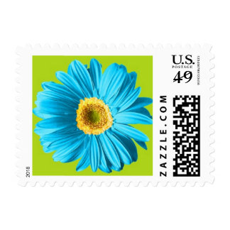 Blue Gerbera Daisy Postage Stamps