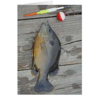 blue gill and fishing lures and hook card