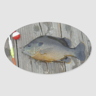 blue gill and fishing lures and hook oval sticker