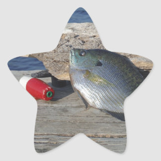 Blue Gill on the Dock Star Sticker