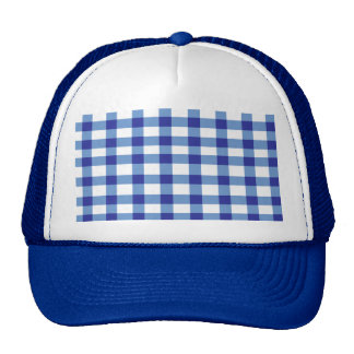 Blue Gingham Trucker Hat