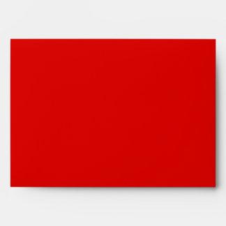 Blue Gingham & Red Greeting Card Envelope