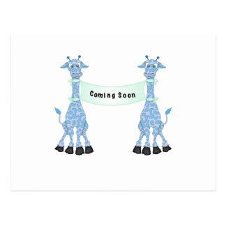 Blue Giraffes Coming Soon Postcard