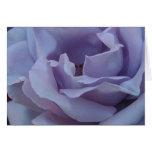 Blue girl rose - Card