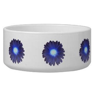 Blue Glow Marigold Dog Bowl