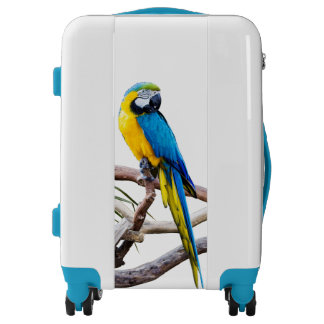 Blue & Gold Macaw carry-on luggage