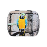 blue gold macaw on perch paintery parrot jelly belly tins
