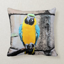 blue gold macaw on perch paintery parrot throw pillow