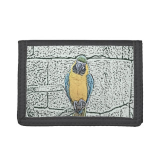 blue gold macaw on perch watercolor trifold wallets