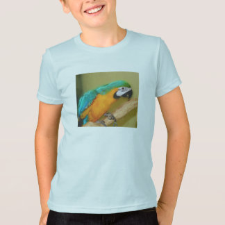 Blue Gold Macaw Parrot Animal Shirt