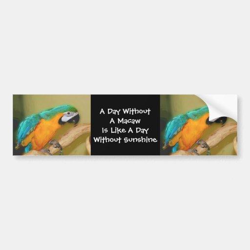 Blue Gold Macaw Parrot Cute Bumper Sticker