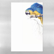 Blue Gold Macaw Parrot Dry Erase Magnetic Sheet