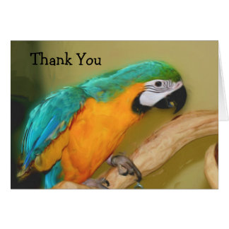 Blue Gold Macaw Parrot Painting Thank You Card