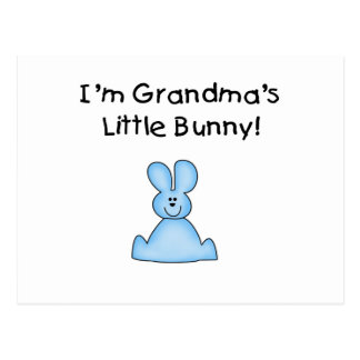 Blue Grandma's Little Bunny T-shirts and Gifts Postcard