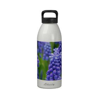 Blue Grape Hyacinths Water Bottles