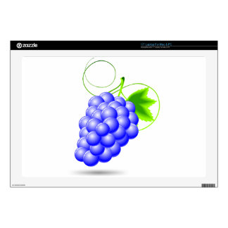 blue grape illustration for a vegetables or casino decal for laptop