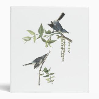 Blue-gray Gnatcatcher, John Audubon 3 Ring Binder