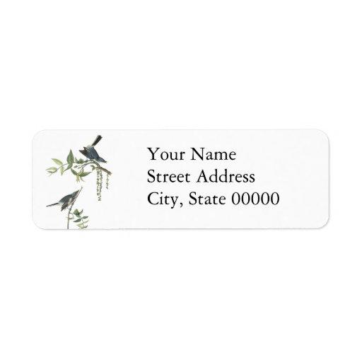 Blue-gray Gnatcatcher, John Audubon Return Address Label