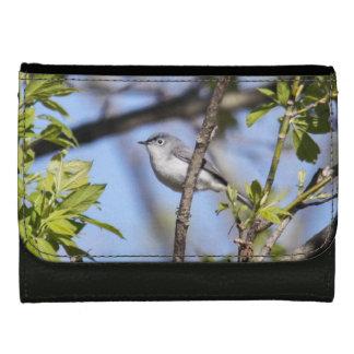 Blue-gray Gnatcatcher Women's Wallet