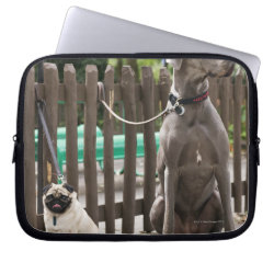 Neoprene Laptop Sleeve 10 inch with Great Dane Phone Cases design
