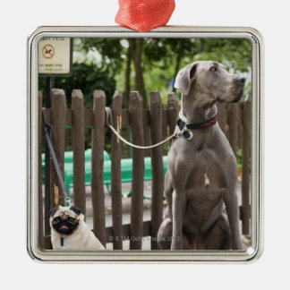 Blue Great Dane and pug dogs on leashes Christmas Tree Ornaments