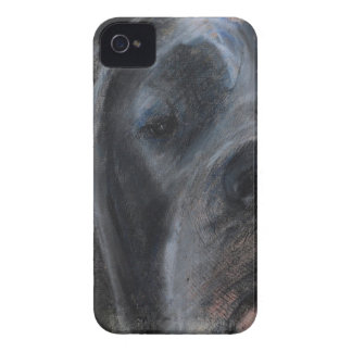 Blue Great Dane Face iPhone 4 Covers