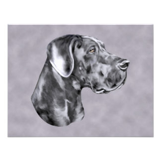Blue Great Dane Uncropped Event or Party Invitation