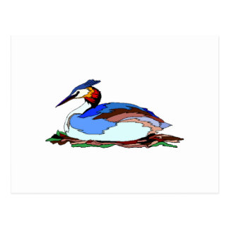 Blue Grebe Post Cards