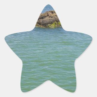 Blue Green Abstract Water Photograph Star Sticker