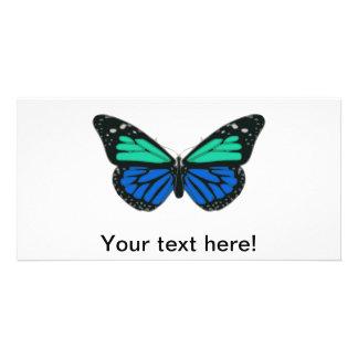 Blue green butterfly clip art photo card template