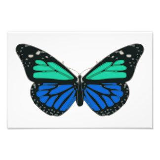 Blue green butterfly clip art photo print