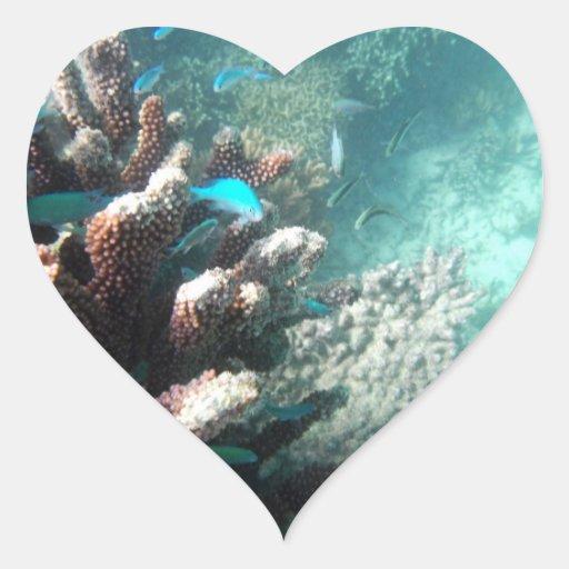 Blue-green Chromis (Chromis viridis) Heart Sticker