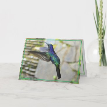 Blue Green Hummingbird Card