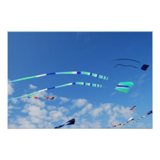 Blue Green Long Tail Kite Posters