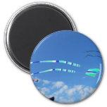 Blue Green Long Tail Kite Refrigerator Magnet